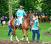 Sun Stricker before The Small Wonder Stakes at Delaware Park on 9/12/15