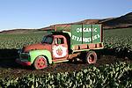Truck in field near Davenport