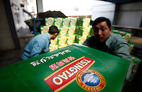 A worker checks the labling on beer bottles on a bottling line at the Tsingtao Brewery in Qingdao, Shandong Province, China. Established in 1903 by German entrepreneurs, Tsingtao Brewery is now China's largest beer manufacturer..