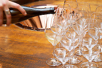 Wine tasting. Spittoon. Wine glasses. Domaine Negociant Champy Pere & Fils, Beaune, Burgundy, France