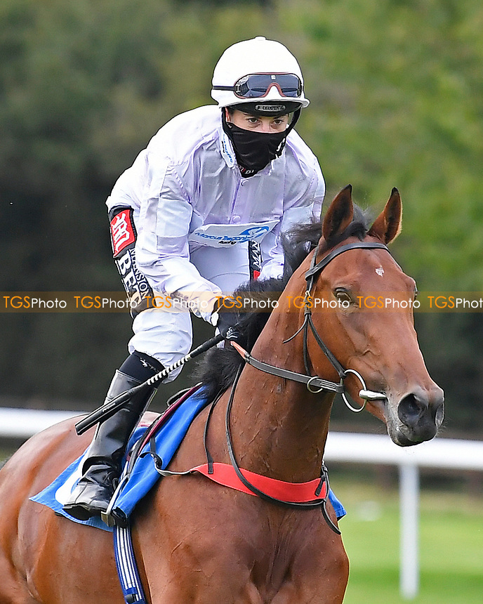 Lady Alexandria ridden by Hayley Turner goes down to the start of The British EBF Novice Stakes  during Horse Racing at Salisbury Racecourse on 11th September 2020