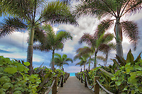 Path boardwalk and palm trees. Grace Bay. Providenciales. Turks and Caicos.