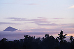 Mount Batur in Cloud at Sunrise with Birds/Bats Flying, Bali, Indonesia