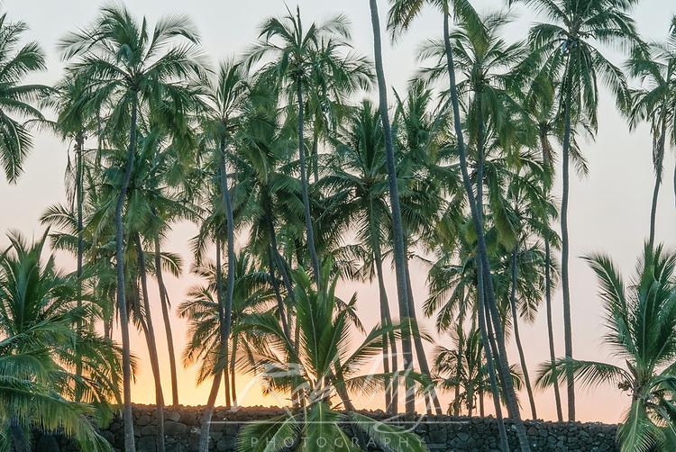USA, HI, Puuhonua O Honaunau National Historic Park, Place of Refuge, Big Island Sunset
