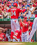 21 June 2015: Washington Nationals outfielder Bryce Harper returns to the dugout, greeted by coach Mark Weidemaier after hitting a two-run homer to open the scoring in the first inning against the Pittsburgh Pirates at Nationals Park in Washington, DC. The Nationals defeated the Pirates 9-2 to sweep their 3-game weekend series, and improve their record to 37-33. Mandatory Credit: Ed Wolfstein Photo *** RAW (NEF) Image File Available ***