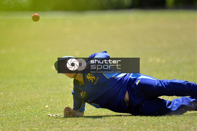 T20 Cricket ACOB v Stoke Nayland at Botanics, Saturday 15th February 2014, Nelson, New Zealand, Photos: Barry Whitnall/Shuttersport