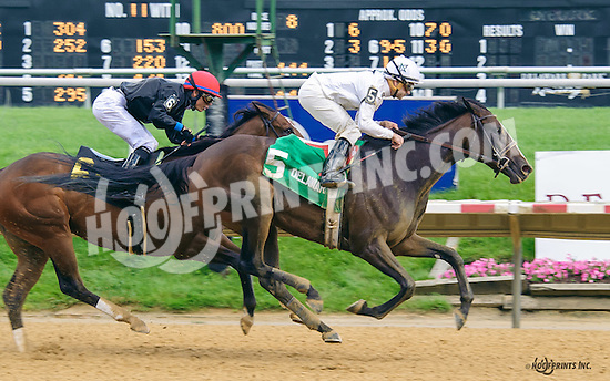 Dark Nile winning The Our Mims Stakes at Delaware Park on 6/8/16 <br /> WinStar Farms, owner<br /> Arnaud Delacour, trainer<br /> Joe Bravo, up