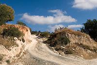 Zypern (Süd), Straße bei Pachna im Troodos-Gebirge