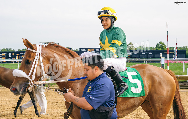 Silly Face winning at Delaware Park on 9/21/16