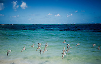 Birds fly over the clear waters of Little Corn Island off the coast of Nicaragua in April, 2009...