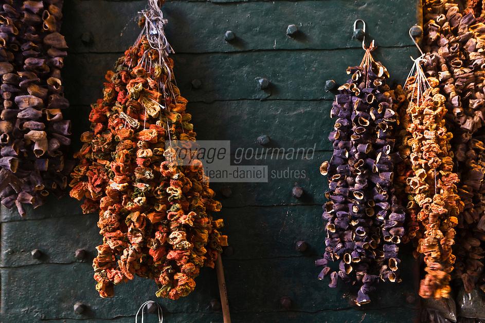 Europe/Turquie/Istanbul : Le Bazar aux épices- Chapelet de piments et d'aubergines séchés destinés à être farcis