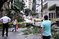 SAO PAULO, SP, 08 MARÇO 2013 -QUEDA DE ARVORE- Uma arvore caiu na Rua Bela Cintra altura do 1100 sentido centro interditando a via, nesta tarde de sexta-feira, 08. (FOTO: ADRIANO LIMA / BRAZIL PHOTO PRESS).