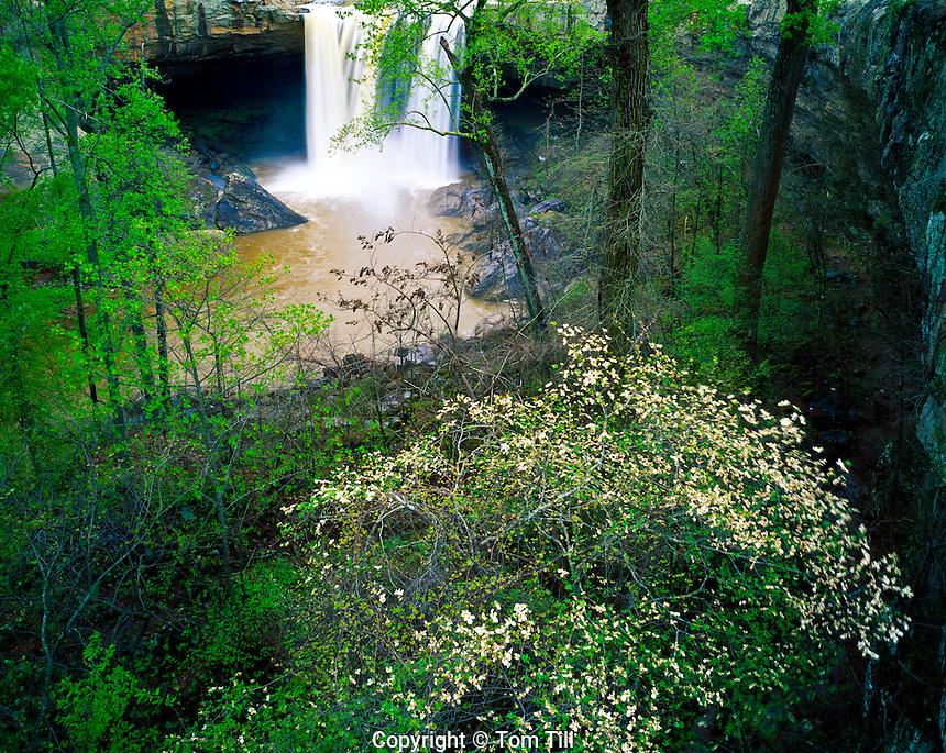 Noccalula Falls Park, Northern Alabama Mountains, Alabama
