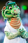 Dayton Dragons - 2007