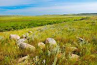 Grasslands, Grasslands National Park, Saskatchewan, Canada