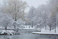 Snow storm, Public Garden, Boston