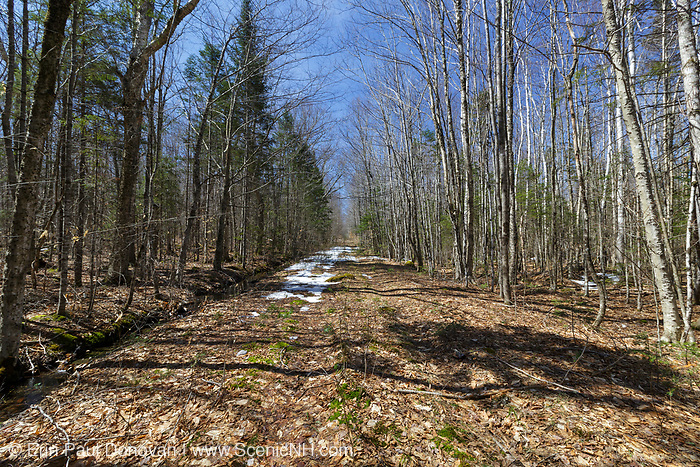 The path of the old Daniel Webster Highway (Route 3) in Bethlehem, New Hampshire during the spring months. Pieces of pavement can still be found along this section of the abandoned road.
