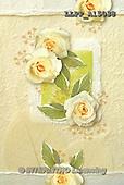 Maira, FLOWERS, BLUMEN, FLORES, photos+++++,LLPPA15038,#F#