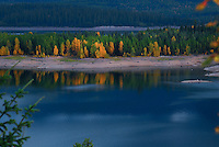 Trees in autumn color line the shores of rich blue water at Hungry Horse Reservoir, Montana