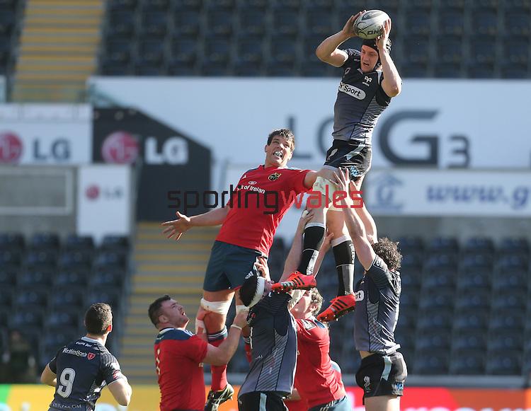 Ospreys flanker James King beats Munster lock Donncha O'Callaghan to the line out ball.<br /> Guiness Pro12<br /> Ospreys v Munster<br /> Liberty Stadium<br /> 07.03.15<br /> ©Steve Pope - SPORTINGWALES