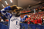 UK Basketball 2010: Cornell