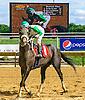 Yo Soy El Lobo winning at Delaware Park on 9/3/16