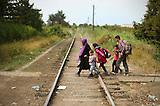 20150819_ungarisch-serbische Grenze