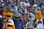 A group of mascots listen to the National Anthem before the Triple-A All Star game in Reno, Nev., on Wednesday, July 17, 2013. <br /> Photo by Cathleen Allison