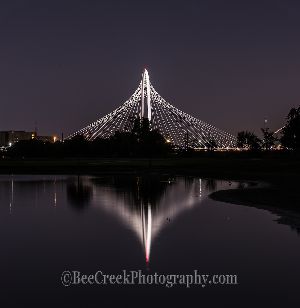 This is a reflection of the Margaret Hunt Hill Bridge vertical panorama with its reflection in the water of the Trinity river after dark in downtown Dallas after dark.