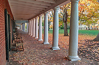 The Lawn area with Rotunda and gardens at the University of Virginia in Charlottesville, Virginia. Photo/Andrew Shurtleff