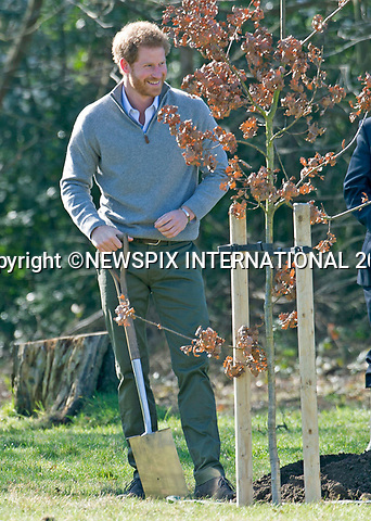 15.03.2017; Epping, UK: PRINCE HARRY<br />
