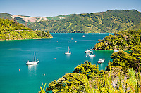Ngakuta Bay on Queen Charlotte Scenic Drive - Marlborough Sounds , New Zealand