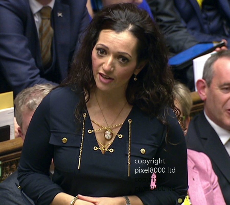 "Pic shows:  House of Commons debate on whether to authorise air strikes in Syria <br /> <br /> Bling frocked Tasmina Ahmed-Sheikh, from the SNP, is the latest to call on David Cameron to withdraw his ""terrorist sympathisers"" comments.<br /> <br /> He responds by saying: ""Everyone is now focused on the main issues in front of us (in this debate).""<br /> <br /> <br /> Picture by Pixel8000 07917221968"