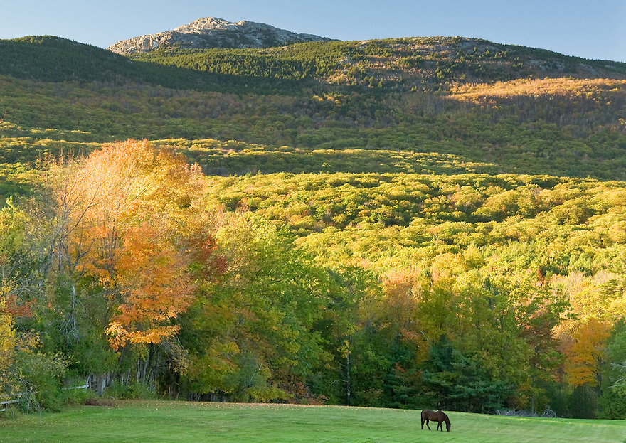 Mt Monadnock is the prominent feature in the landscape of southwestern New Hampshire.