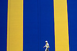 Woman walking in front of yellow blue striped wall