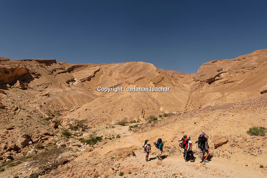 Israel, Hikers in Wadi Gov at the Negev desert