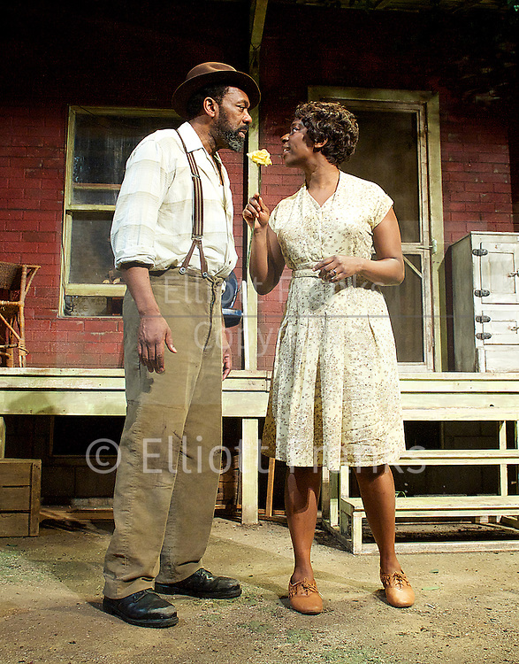 the generation gap in fences by august wilson Everything you ever wanted to know about the quotes talking about family in fences fences by august wilson home music shows the large generation gap.