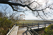 Boardwalk at Sandy Point State Reservation on Plum Island, Massachusetts USA.
