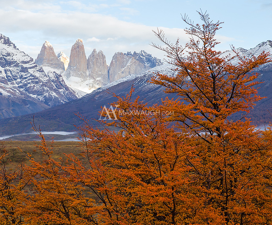 We visited Torres del Paine near the peak of autumn color.