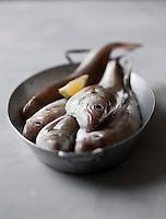 Gastronomie Générale:  Merlans - Stylisme : Valérie LHOMME