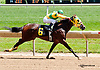 Epic Story winning at Delaware Park racetrack on 6/4/14