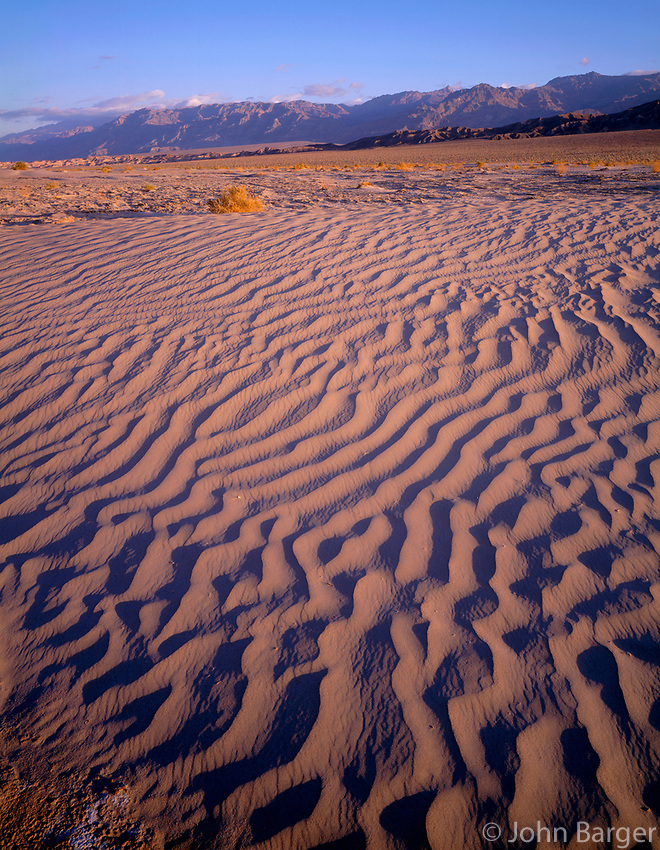 CADDV_017 - Textures in sand dunes at Mesquite Flats are defined by early morning light, Grapevine Mountains rise in the distance, Death Valley National Park, California, USA --- (4x5 inch original, File size: 6000x7729, 133mb uncompressed).