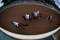 ARCADIA, CA - FEBRUARY 04: Royal Mo #1, ridden by Victor Espinoza leads the field for the Robert B. Lewis Memorial Stakes at Santa Anita Park on February 4, 2017 in Arcadia, California. (Photo by Alex Evers/Eclipse Sportswire/Getty Images)