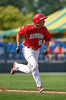 Auburn Doubledays designated hitter Jake Jefferies (23) runs to first during a game against the Batavia Muckdogs on September 7, 2015 at Falcon Park in Auburn, New York.  Auburn defeated Batavia 11-10 in ten innings.  (Mike Janes/Four Seam Images)
