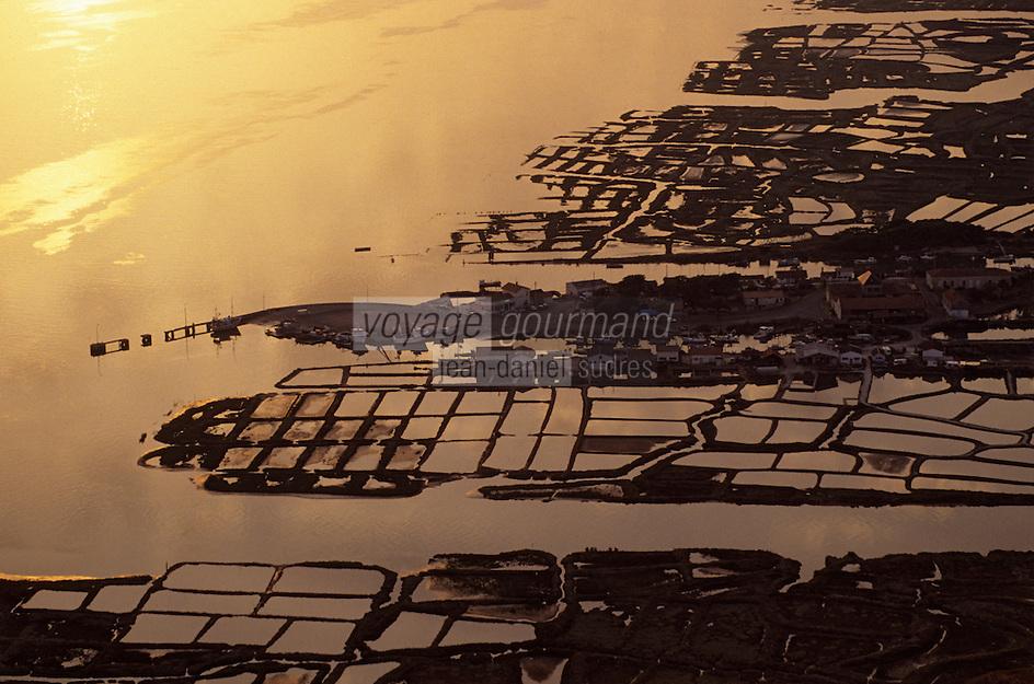 """Europe/France/Poitou-Charentes/17/Charente Maritime/Marennes: Le port ostréicole """"La Cayenne"""" - Vue aérienne des parcs à huitres au soleil couchant"""