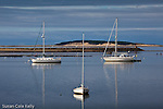 Boats in Wellfleet Harbor, Wellfleet, Cape Cod, MA, USA