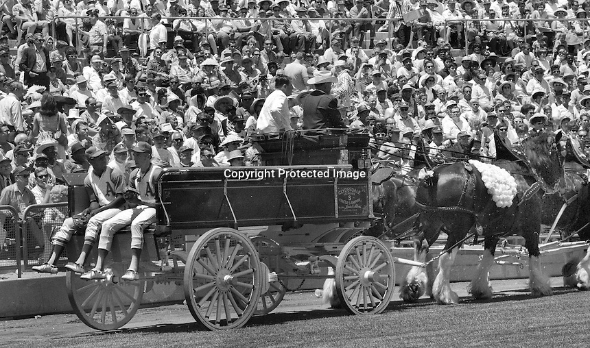 A's players ride in on a horse drawn wagon, during Farmers Day at the Oakland Coliseum. (1969 photo/Ron Riesterer)