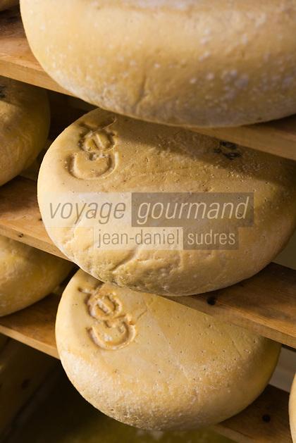 Europe/France/Rhône-Alpes/01/Ain/ Chézery-Forens: Fromagerie de l'Abbaye produit et commercialise le bleu de Gex- la cave d'affinage