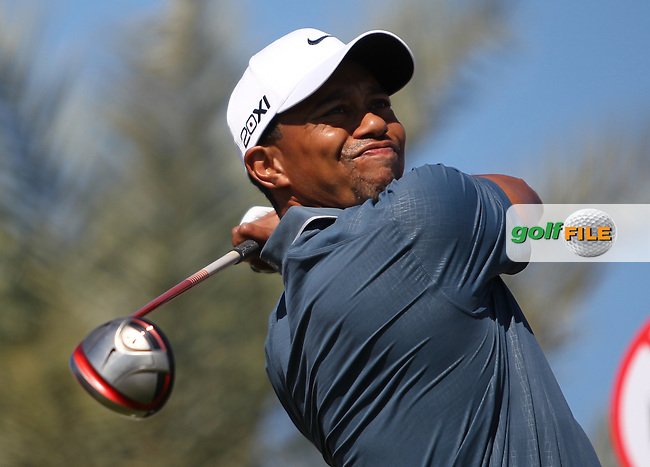 Tiger Woods (USA) on the 2nd tee during the second round at the Abu Dhabi HSBC Golf Championship in the Abu Dhabi golf club, Abu Dhabi, UAE..Picture: Fran Caffrey/www.golffile.ie.
