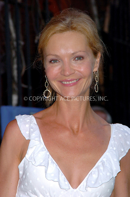 WWW.ACEPIXS.COM . . . . .  ....NEW YORK, MAY 31, 2006....Joan Allen at the Cinema Society and DKNY Jeans present a special screening of The Omen.....Please byline: AJ Sokalner - ACEPIXS.COM.... *** ***..Ace Pictures, Inc:  ..(212) 243-8787 or (646) 769 0430..e-mail: picturedesk@acepixs.com..web: http://www.acepixs.com